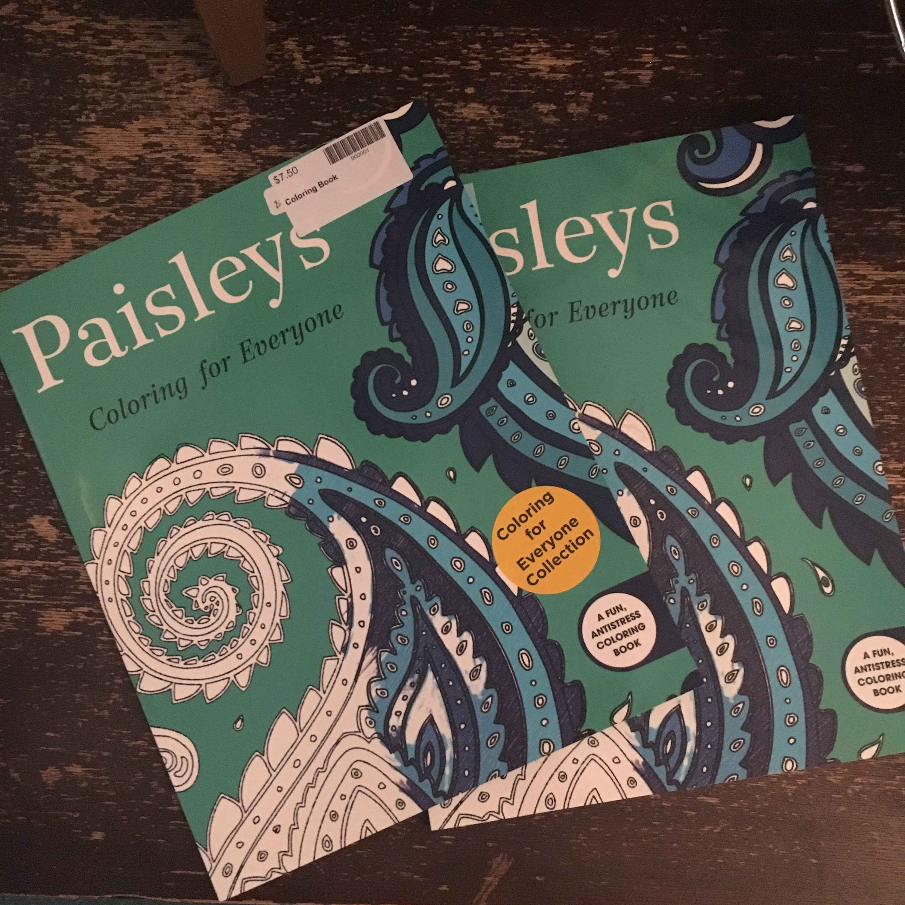 Paisleys Coloring Book Oddmall Outpost